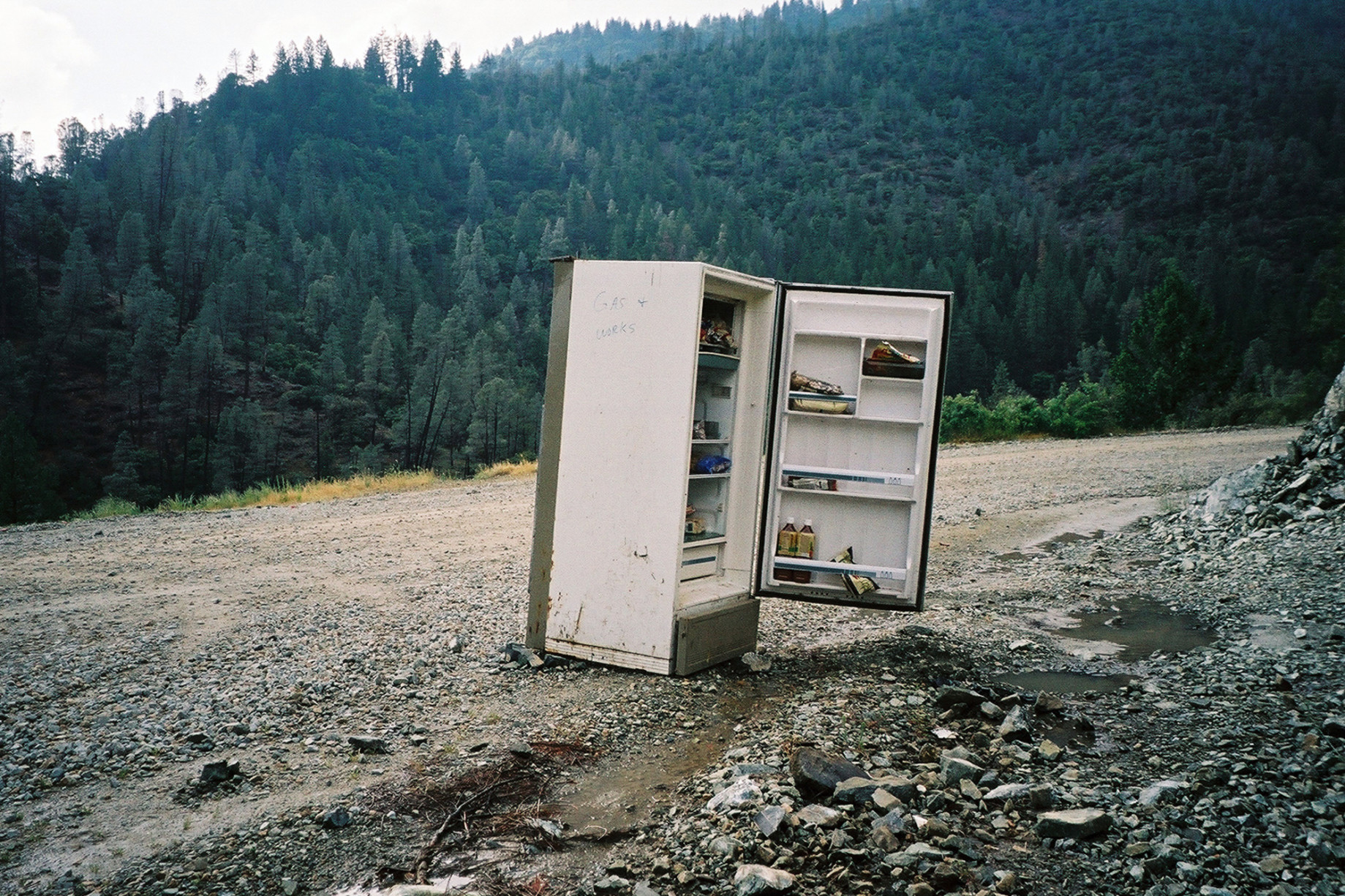 simonweller-california-fridge
