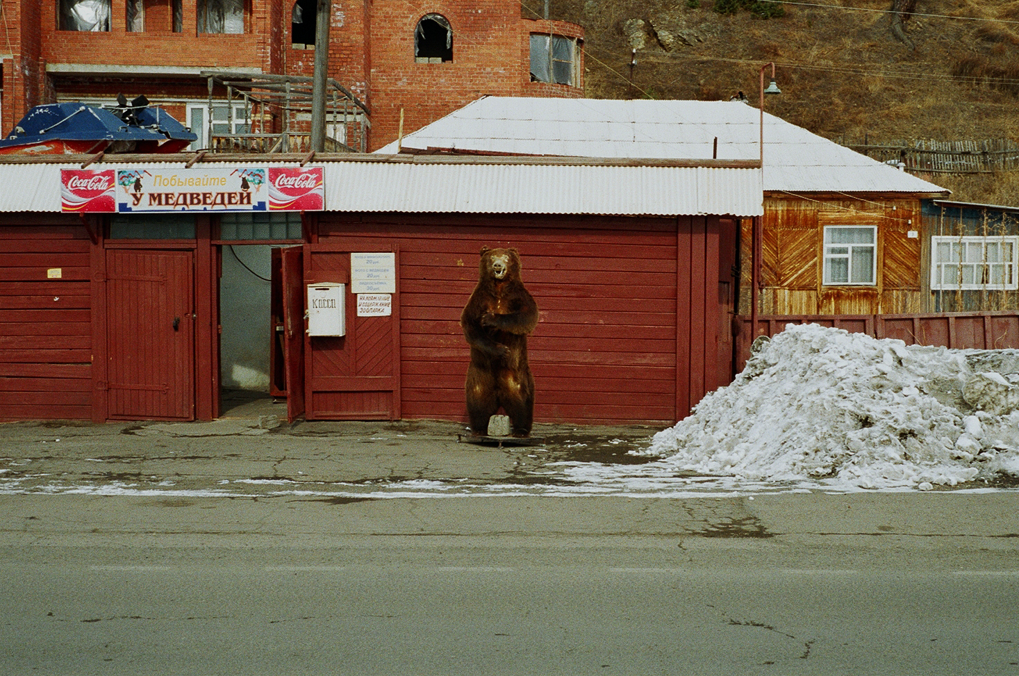 simonweller-siberia-bear