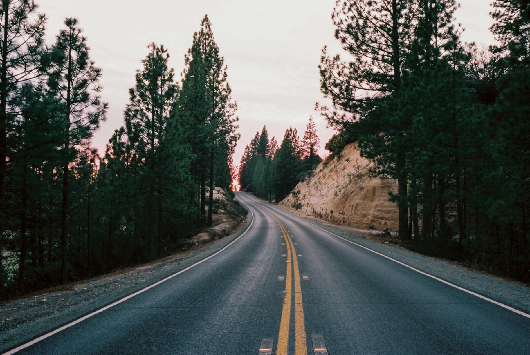 simonweller-thegoldcountry-road